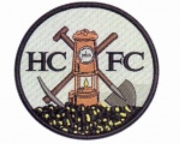 Image result for harworth colliery badge 2016