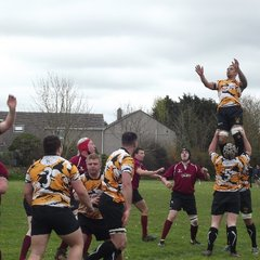 Illogan Park rfc V Stithians rfc--quarter finals league cup