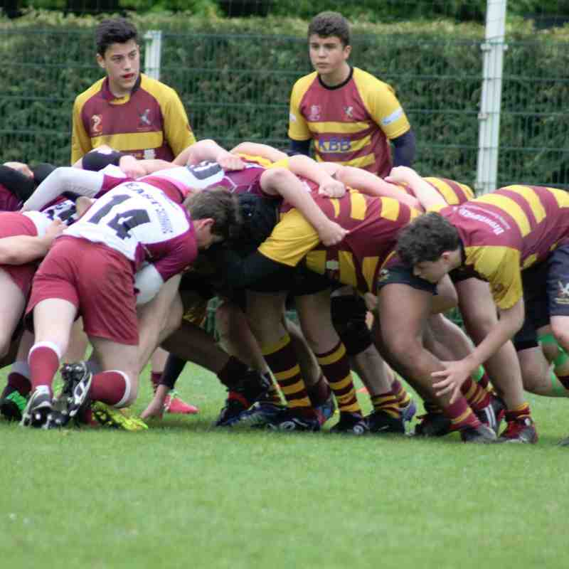 French Festival of Rugby - May 2015