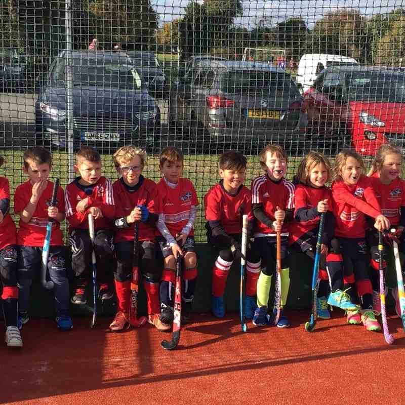 Mixed U8 v Gillingham Anchorians H C - Sun  6 Nov 2016