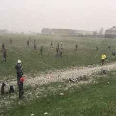 Lane win in Blizzard