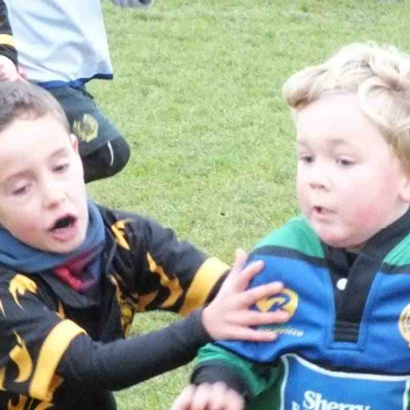 Seapoint U7s v Lansdowne and Westmanstown 1 Dec 2013