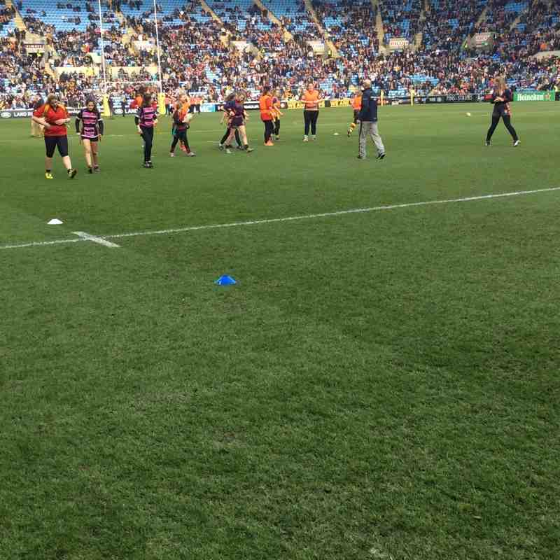 Wasps Half time game