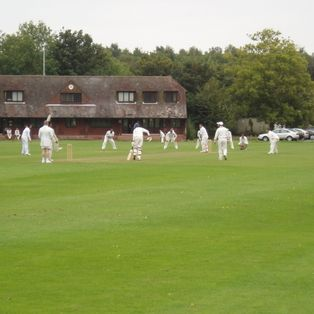 2nd XI hit the high notes thanks to TV star Watson