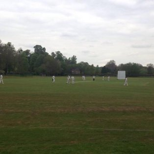 U14 Ricky lose to St Albans after batting collapse