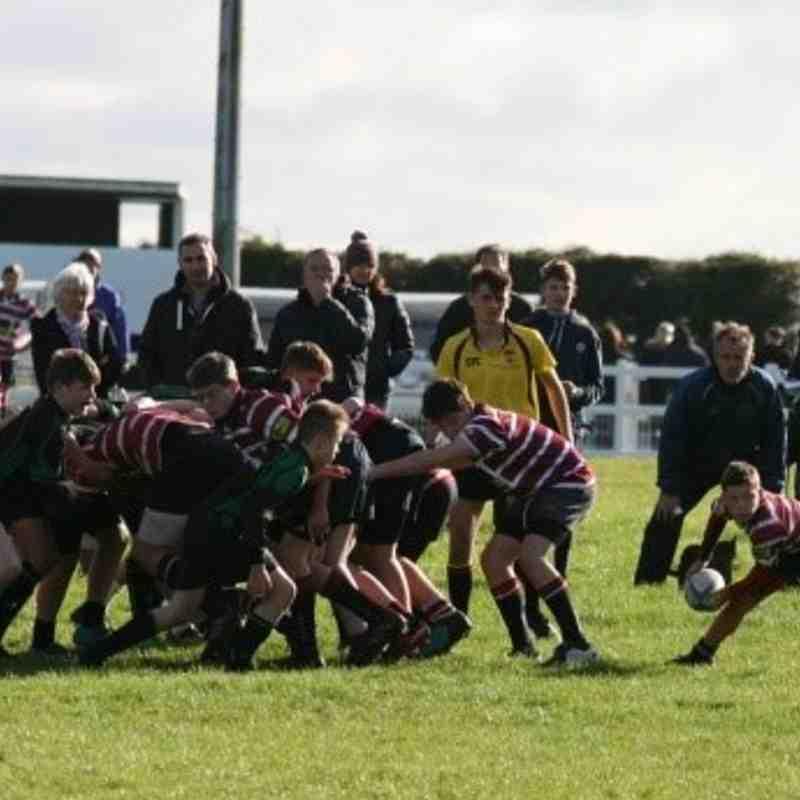 County Cup v Newmarket Nov 17