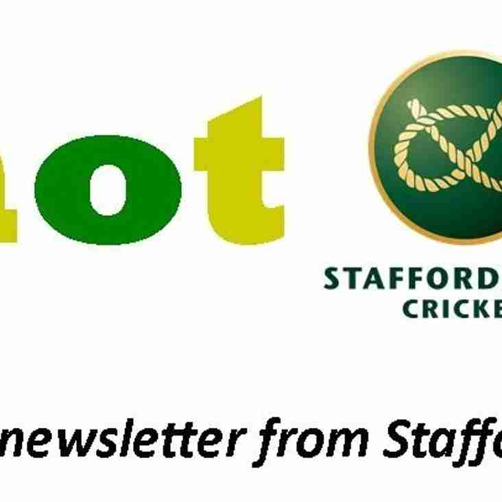 "Monthly ""Knot Out"" Newsletter from Staffordshire Cricket Limited."