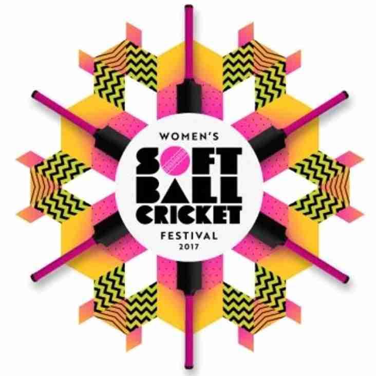Women's Softball Festival.