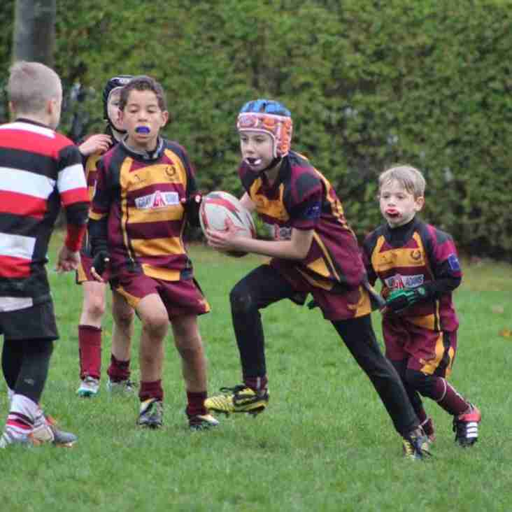 161113 Weekend Review for Ellon Rugby
