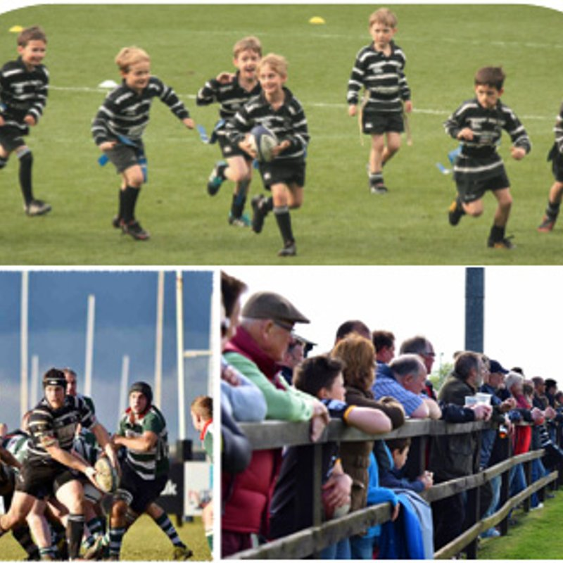There's never been a better time to be a member of Chinnor RFC