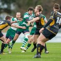 Guernsey Raiders v Tring Rugby 2017