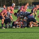Important win for Shelford