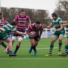 Shelford give leaders Guernsey a run for their money