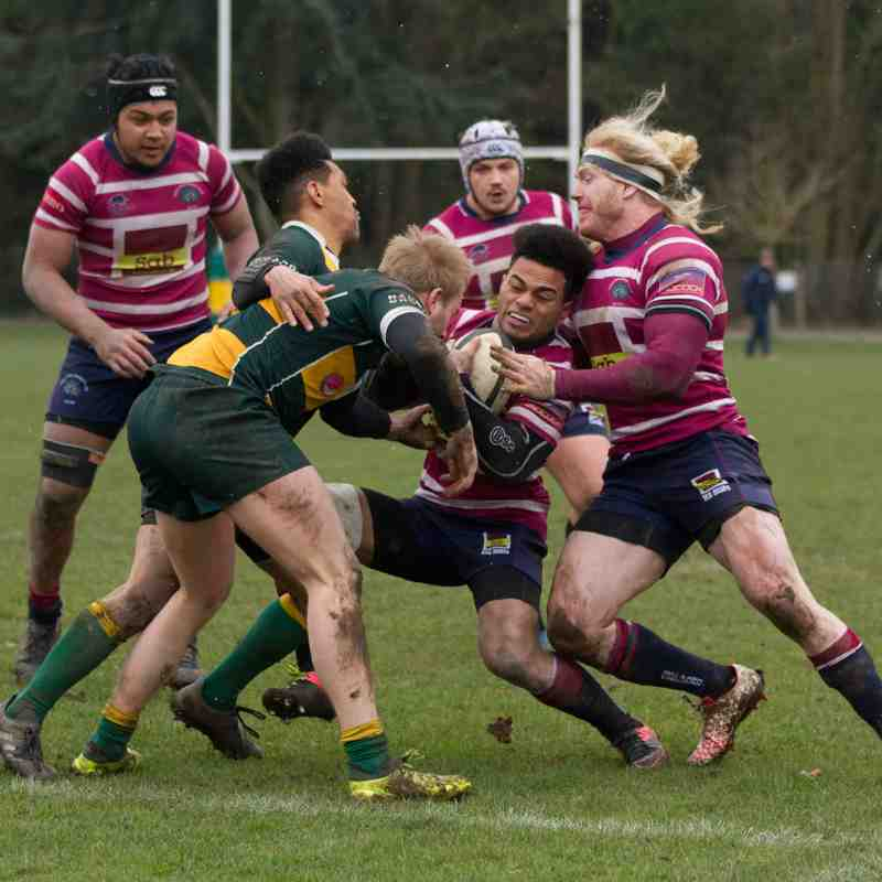 Shelford v Barnes (17/03/2018) by Cat Goryn