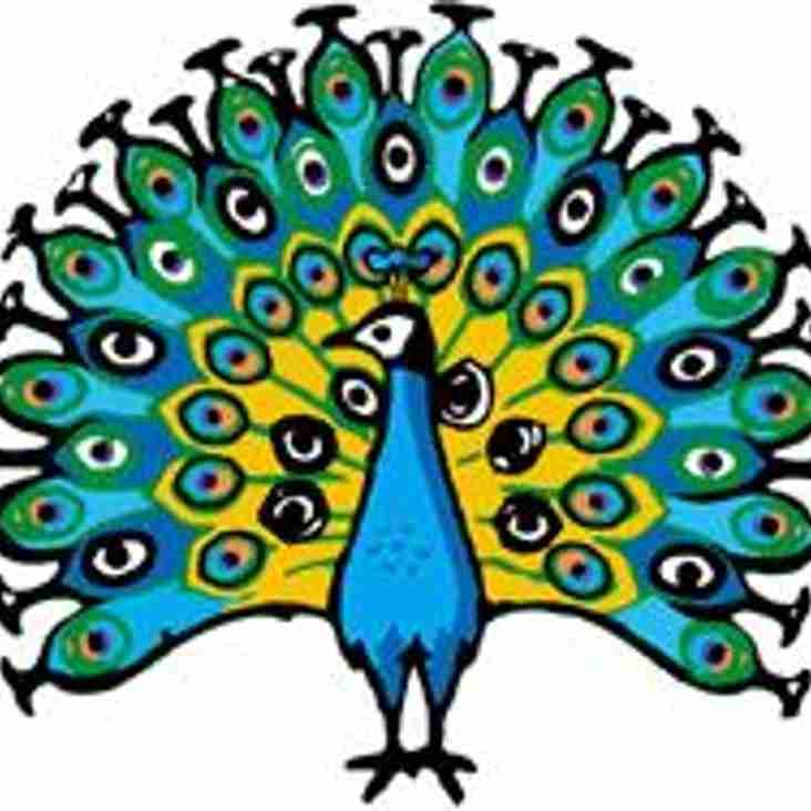 Peacock 100 Club