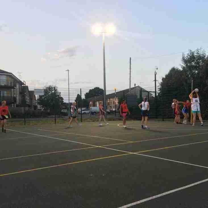 Summer Nets