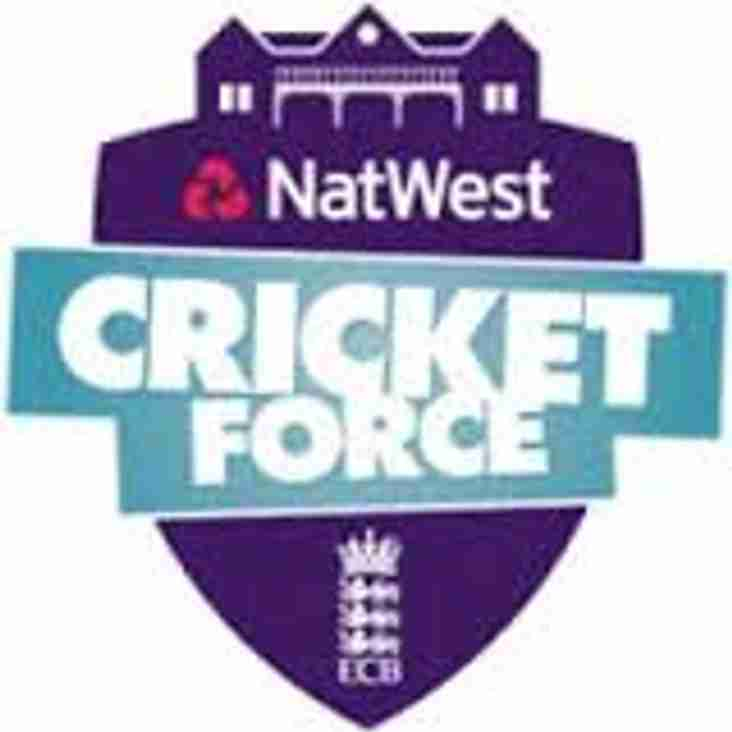 Cricket Force weekend of 8th April.