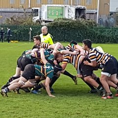 OW Colts V Vipers RFC - 04.11.17