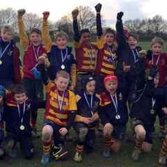 Mud, sweat and cheers at the Colchester Festival as U11's go unbeaten