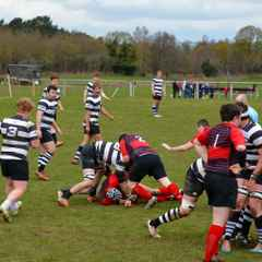 Pulborough thrill with a fine victory in last home match of the season