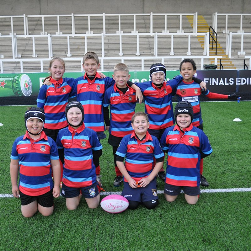 Westoe Tigers at Falcons Festival 23/10/16 by Lorraine Storey