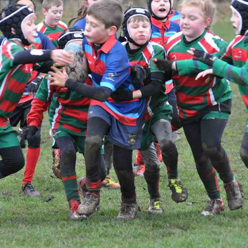 Tigers away to West Hartlepool by Lorraine Storey