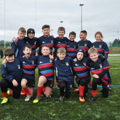 Tigers at Consett by Lorraine Storey pt2