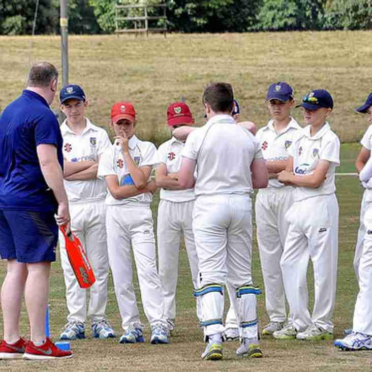 Junior Cricket In 2019