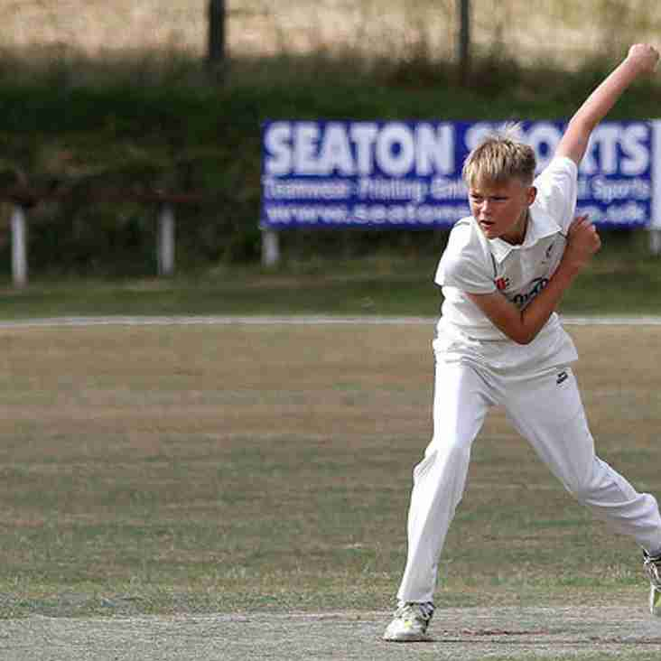 New Junior Cricketers Wanted