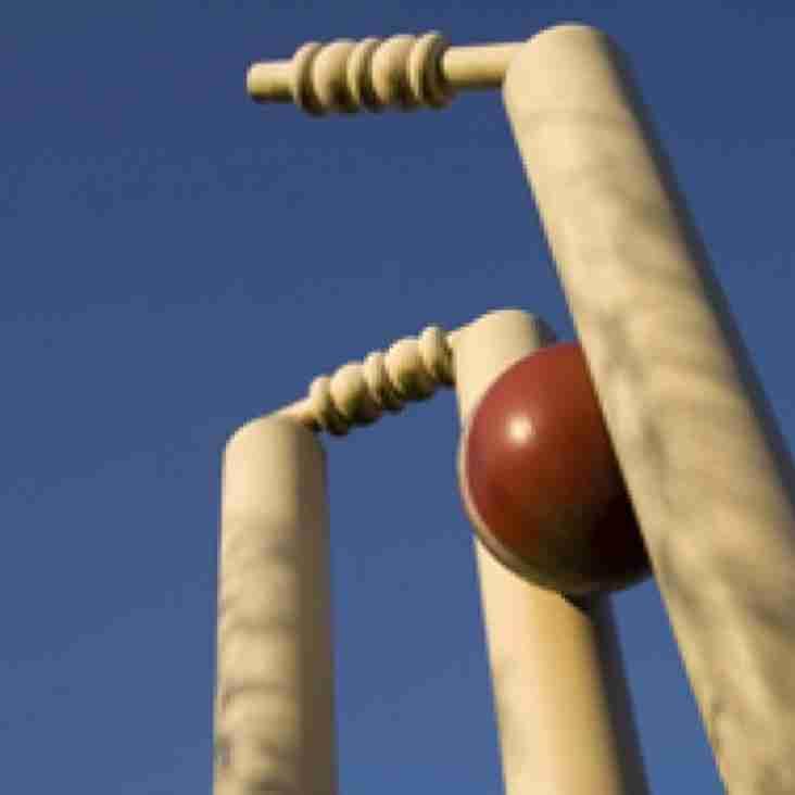 3rd XI Cricket in 2016