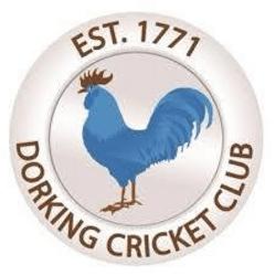 Dorking CC - 1st XI