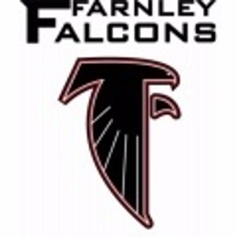 Falcons Seeking 2016 Sponsors