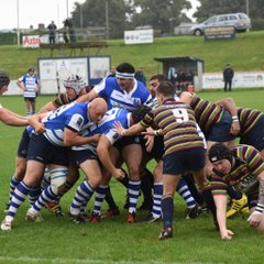 Blues vrs Old Scouts 10th Sept