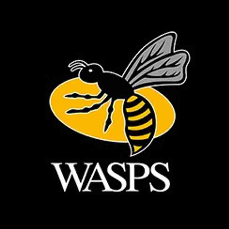 Wasps vs Worcester
