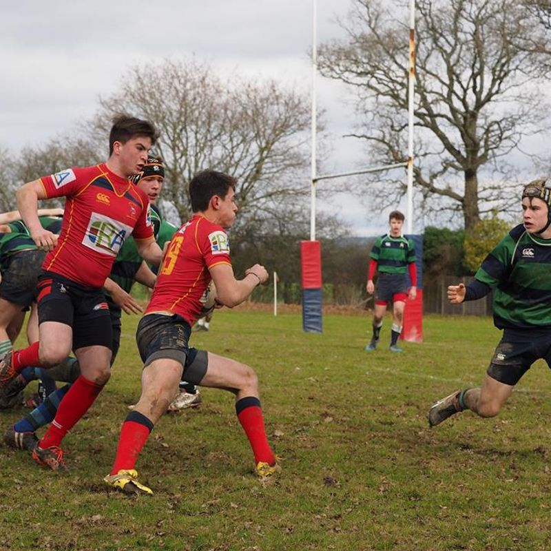 Cranleigh Colts lead Surrey Division 2