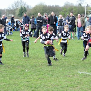 Farnham U8s shine at Esher Festival