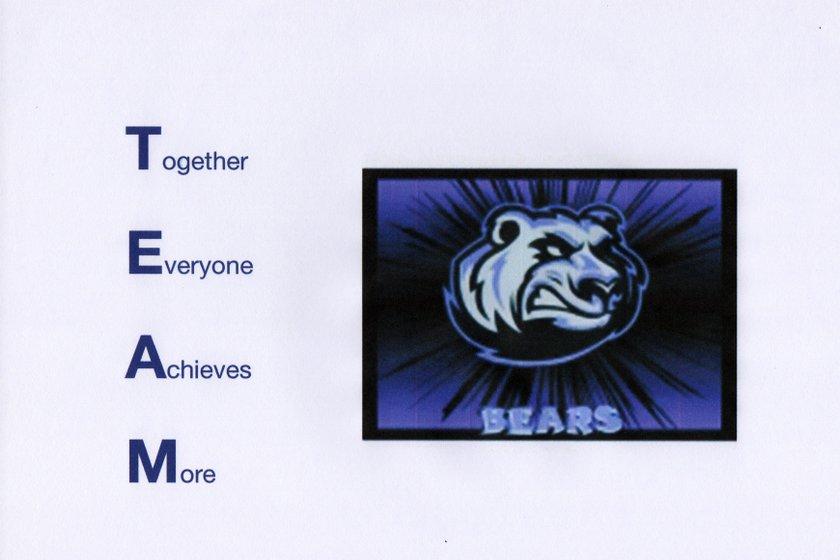 Bears D