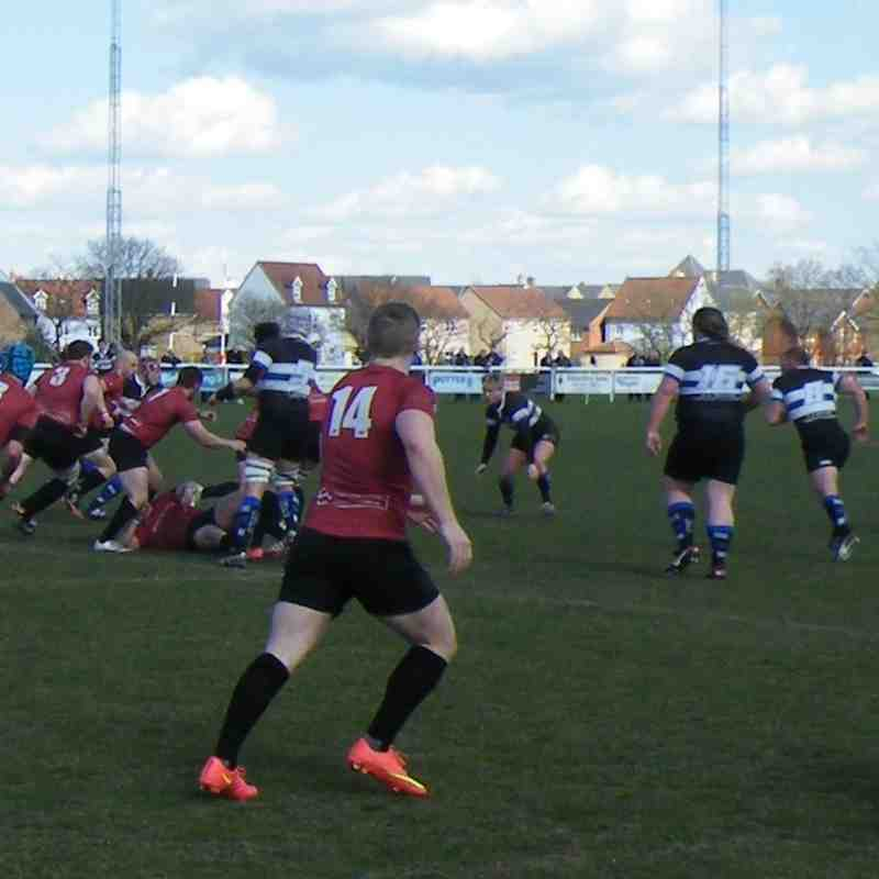 1st XV v Chingford - 11th April 2015