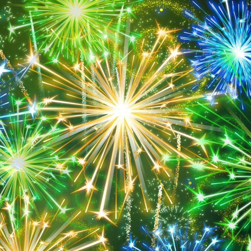 11th November - Fireworks in the Park