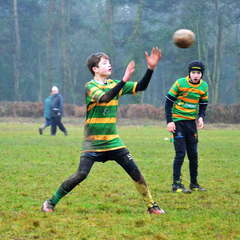 U13s - Eastern Counties Festival - 15 Jan 2017