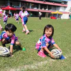 2015/2016 Mini/Junior Rugby Schedule Confirmed