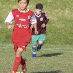 U9 kangaroo vs Glen Eira