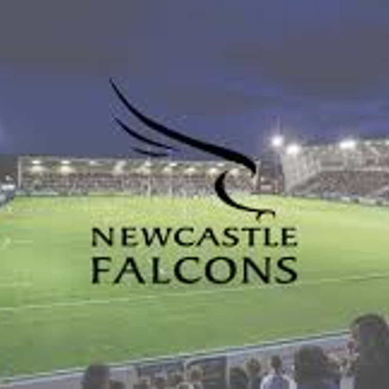 Buy discounted Falcons Tickets Available here and Support the North Easts Premier Team
