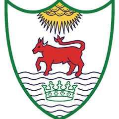 Henley Rugby Club Newsletter
