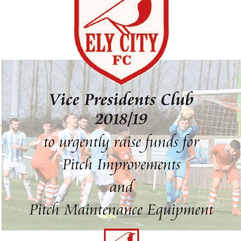 New  Vice Presidents Club Launched