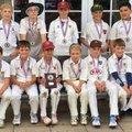 Chobham vs. Guildford Cricket Club
