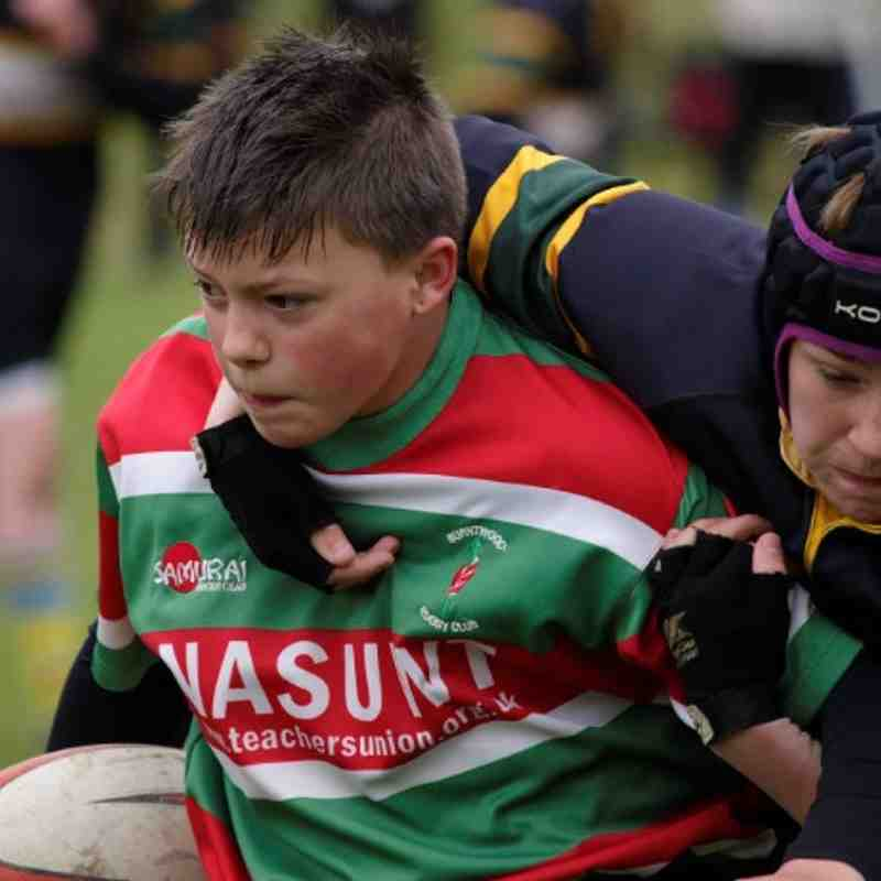 Festival of Rugby, Eccleshall RUFC u13's v Burntwood RUFC u13's 12th May, 2013
