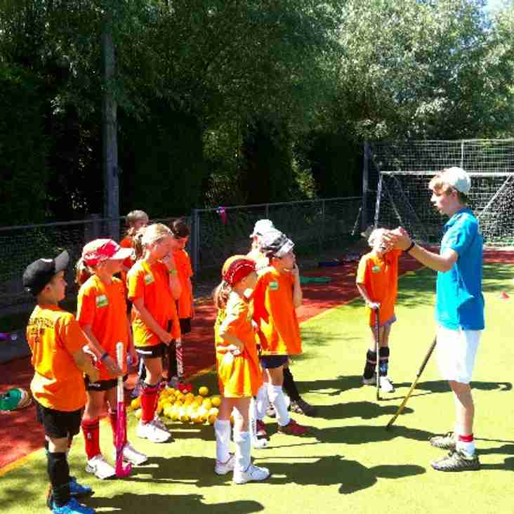 Junior Summer Hockey Camps