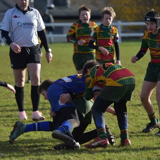 Tough task ahead for the u13s