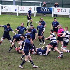 BRIGHTON BLUES 12-31 TUNBRIDGE WELLS